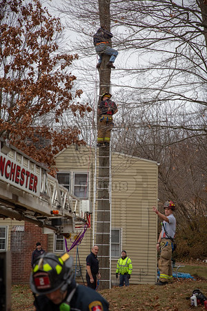 Manchester, Ct tree rescue 11/24/18