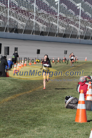 Finish Gallery 1, D1 Girls - 2014 MHSAA LP XC Finals