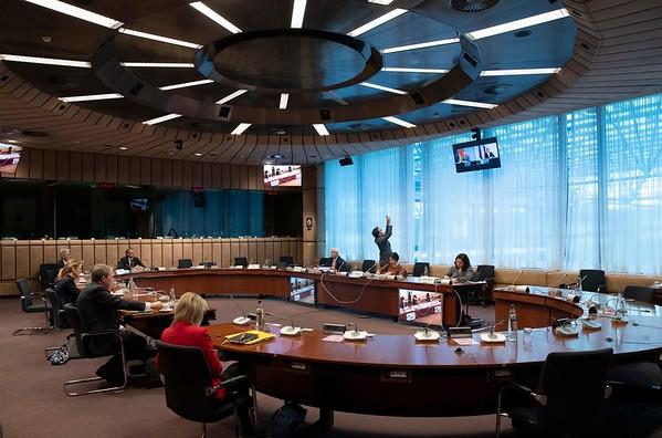 2020-11-18-EEA-Council