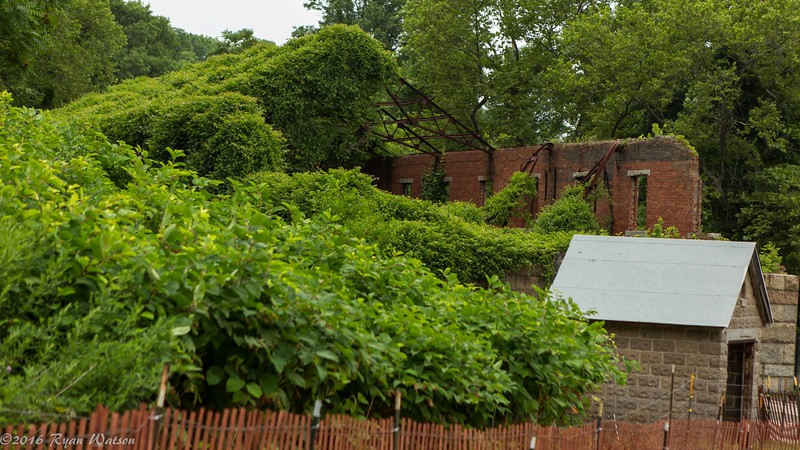 Fort Wadsworth photo walk-31.jpg