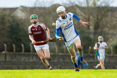 25th January 2020 - Our Lady's Templemore vs St Flannans Ennis