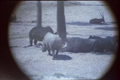 014 - Wild Animal Park