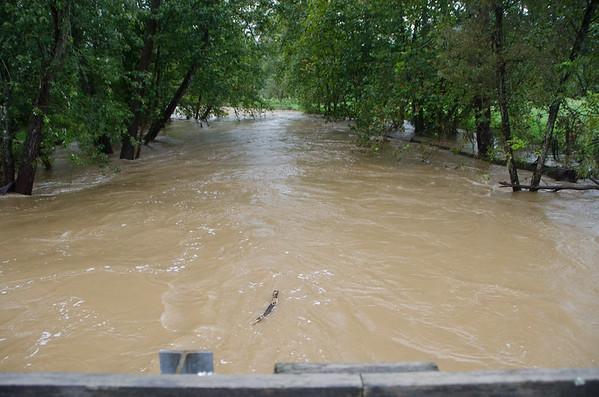 Rain - 9-9-2108