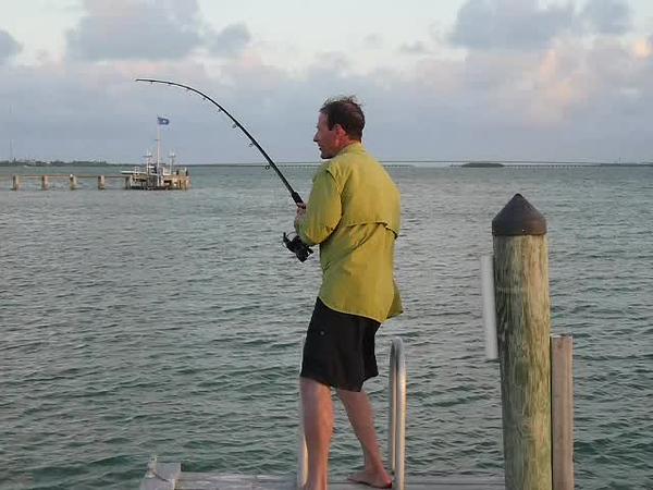 big-torch-key-dock-shark-part-2.mp4