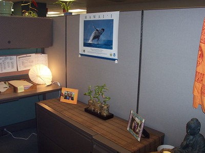 My Cubicle at NOAA
