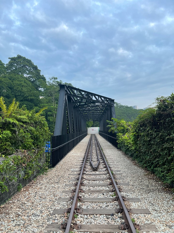 Rail Corridor Central Hillview Bridge