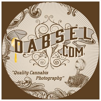 DabselCircle-RR