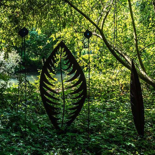 Ian Peters - Fresh Air -5059.jpg