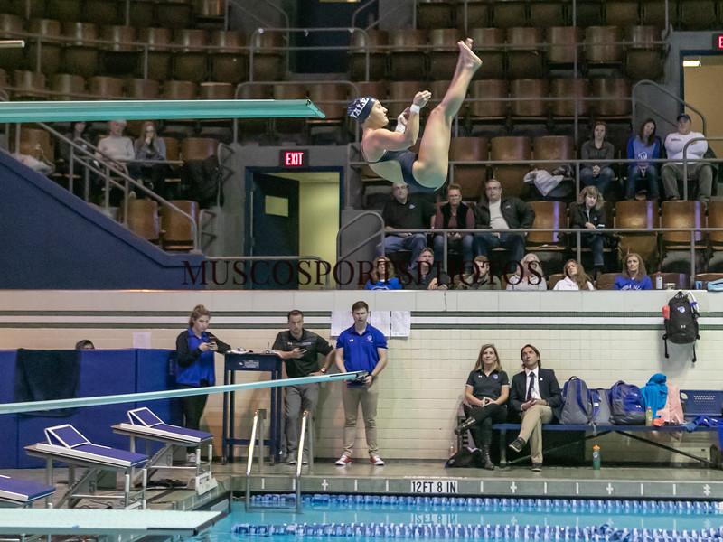 Swimming-diving vs Seton Hall_1258.jpg