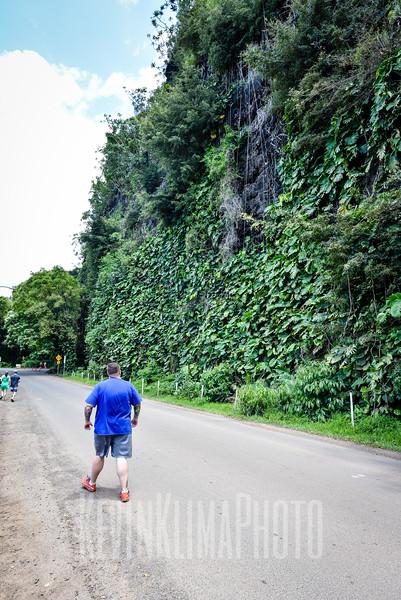 Kauai2017-264.jpg