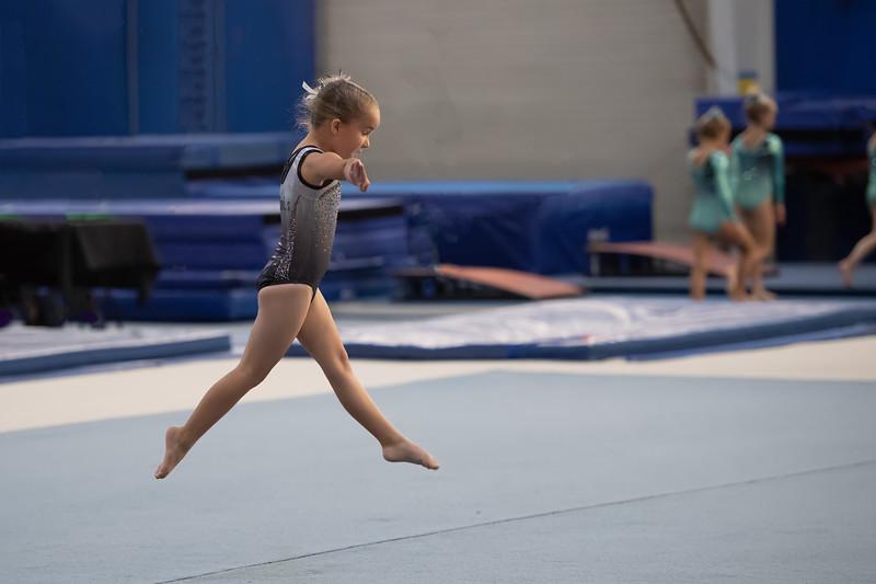 Peyton's Gymnastic Competition