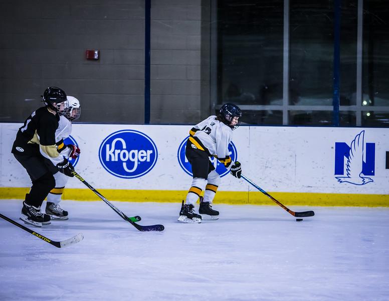 Bruins-117.jpg