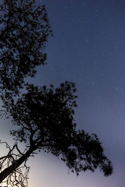 Torrey Pines Night-41-HDR.jpg