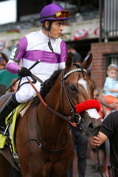 Fore Left (Twirling Candy) and jockey Mario Gutierrez win the Tremont at Belmont Park. Trainer: Doug O'Neill. Owner: Reddam Racing LLC