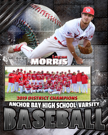 ANCHOR BAY HIGH SCHOOL BASEBALL
