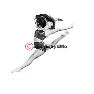 CM Dance Team 2015