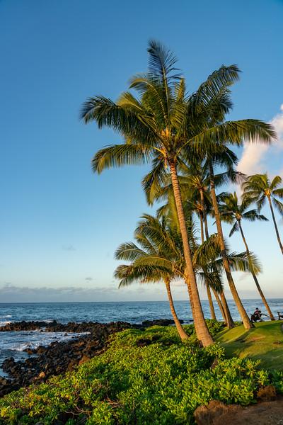 Hawaii 2019-24.jpg
