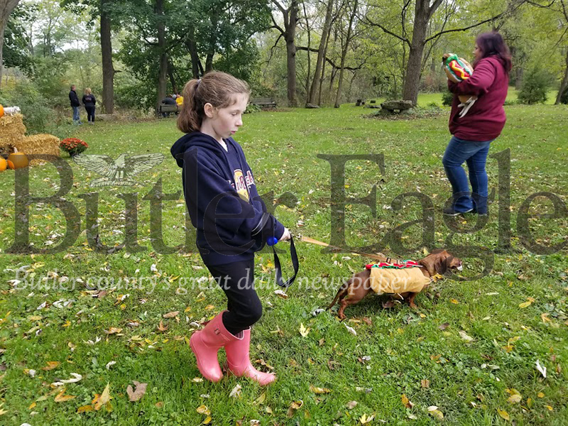 Rayne Brown of Zelienople strolls around before her grandmother's dog, Hondo, raced in the Weenie Fun Run at the fall festival in Harmony.