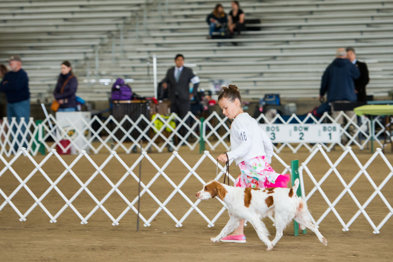 Madison Gardea and Dottie, GCH Brigade's Look At Me Now