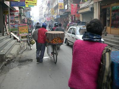 Kathmandu & Chitwan