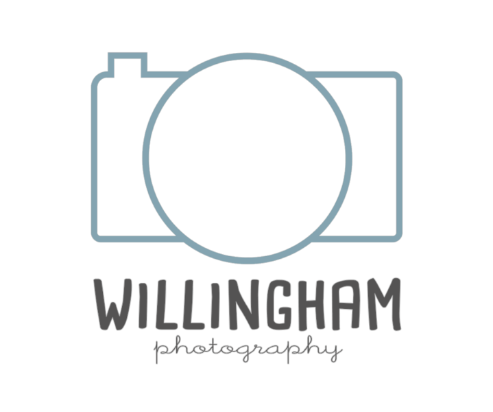 WP logo final_blue.png