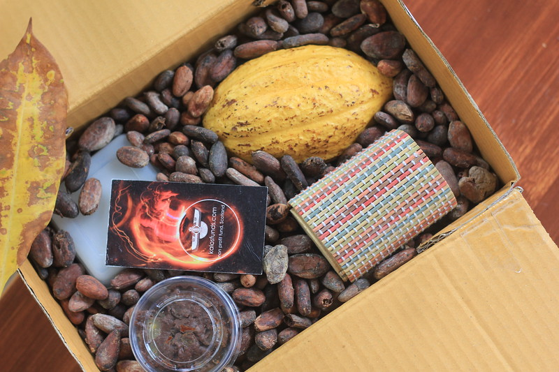 """Cacao gift-box, part of """"Cacao tree Rescue"""" plan"""