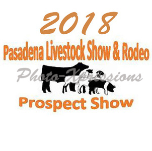 2018 Prospect Show