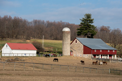 Ryerss Farm for Aged Equines Open House