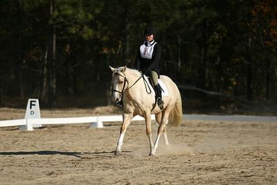 2007-11-17 Starter Horse Trial