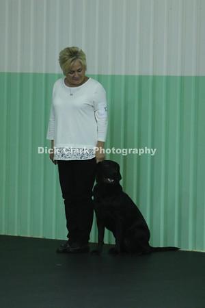 2016-10 Dayton Dog Training Club Trials