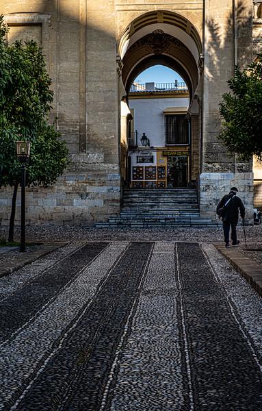 Andalucia-191118-808.jpg