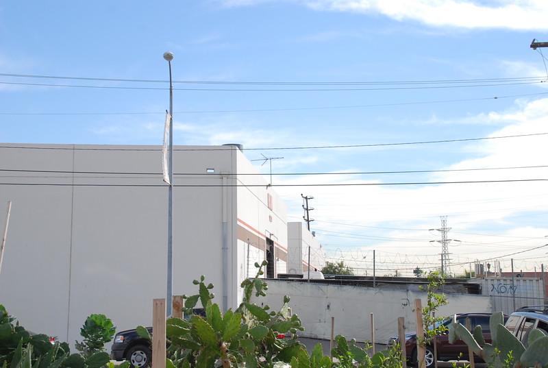 2011-01-26_LASHP_Park_Skyline_079.JPG