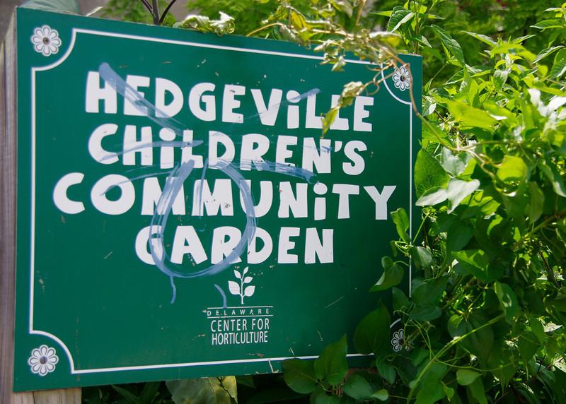 D20_Hedgeville_BH12270.jpg
