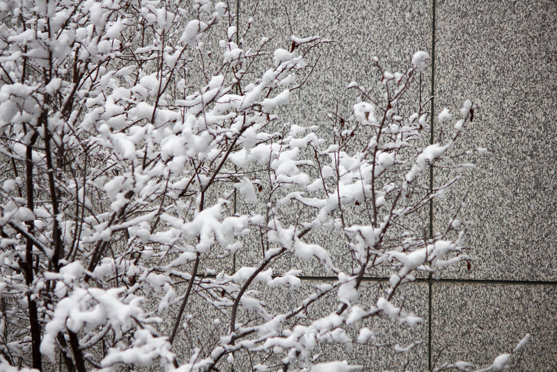 2016_01_31_Winter_Scenery_9999_55.jpg