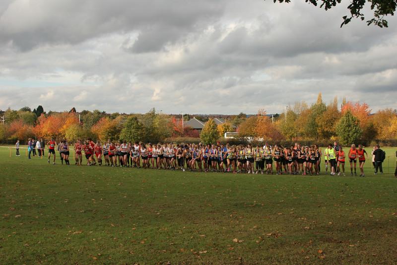 Kent Cross Country League - Somerhill Park, Tonbridge 29 October 2011