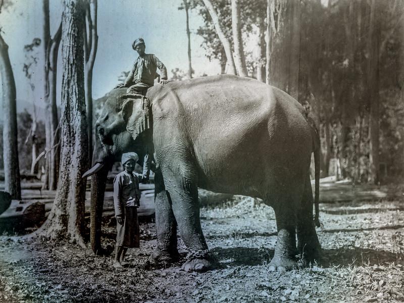 My great grandfather in Burma (1920)