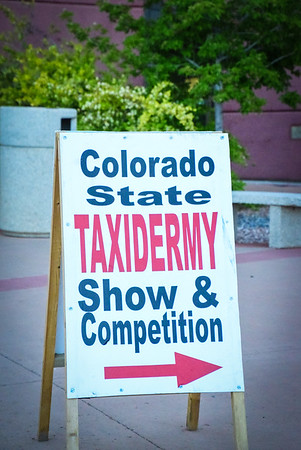CO State Taxidermy Show and Competition