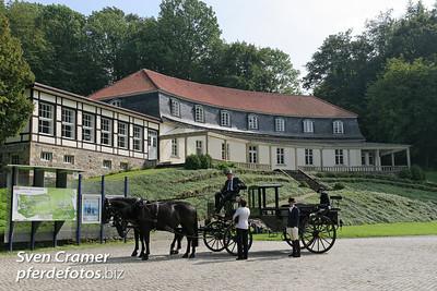 2007-08-25 - Pferdestark