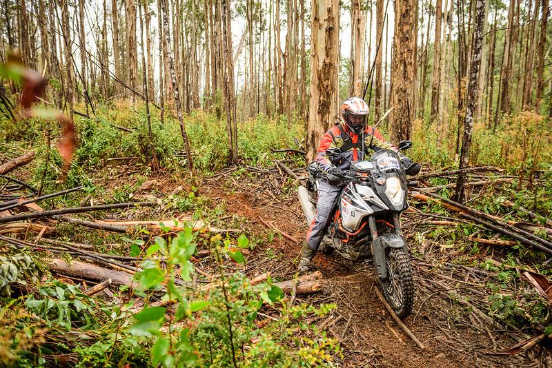 2019 KTM Australia Adventure Rallye (231).jpg