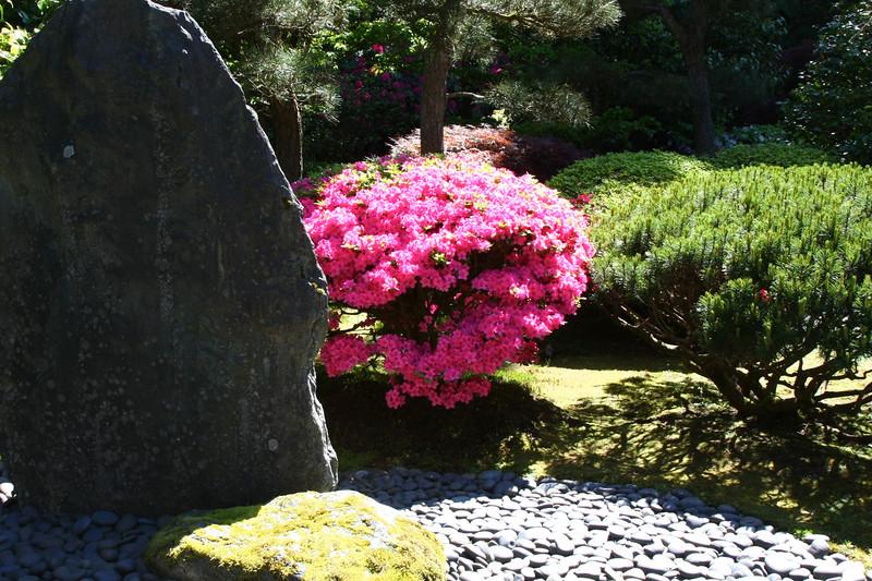 Portland Japanese Garden 6-3-11  1794.jpg
