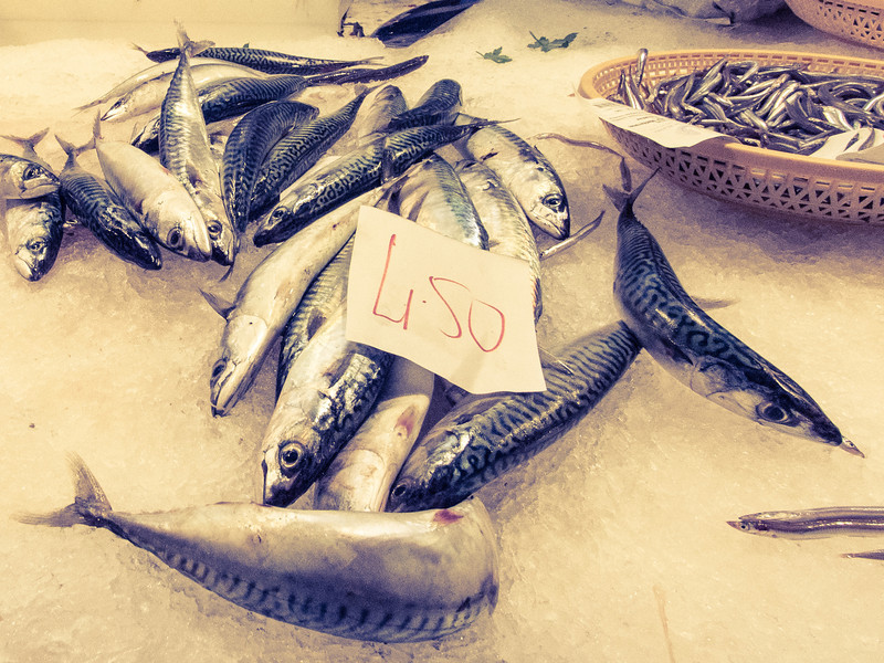 market fish for sale.jpg