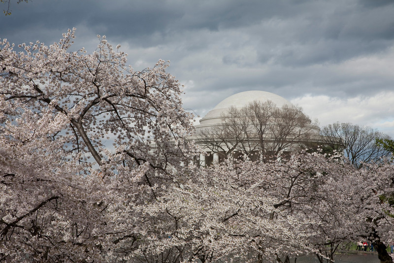 2009-04-03-Washington-DC-0211.jpg