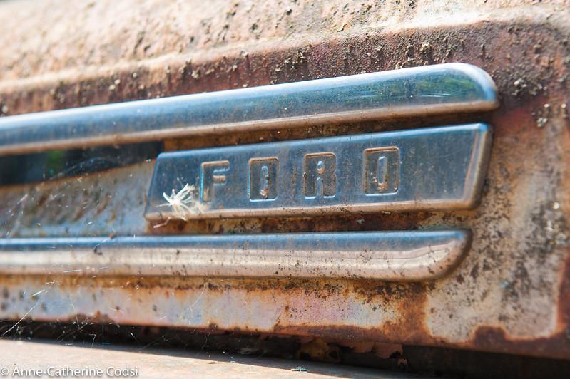 cars 119.jpg