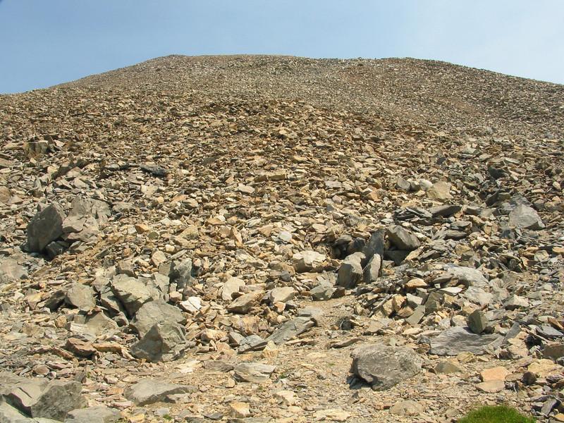 Mount Dana (48).jpg