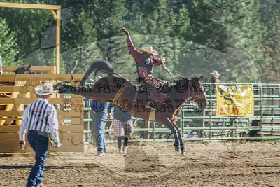 Gold Dust Rodeo 2017