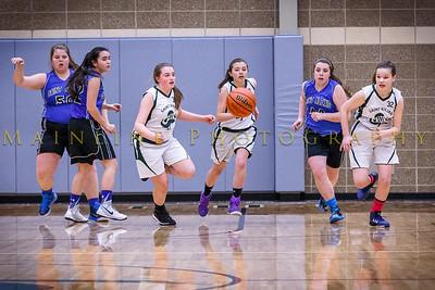 2015 8th grade girls basketball