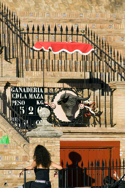 Toriles door, the bull comes out onto the bullring through this door. Maestranza bullring, Seville, autonomous community of Andalusia, southern Spain