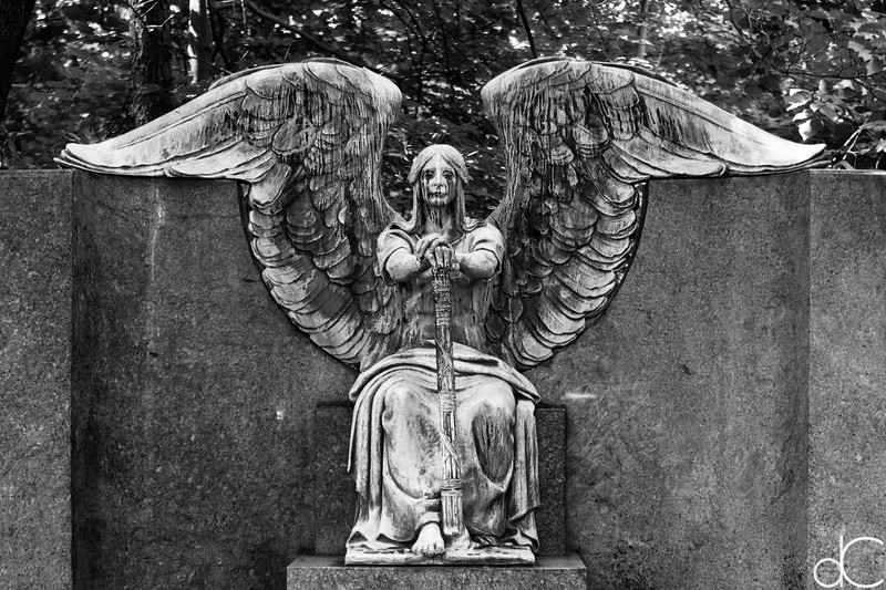 Lake View Cemetery in Black and White
