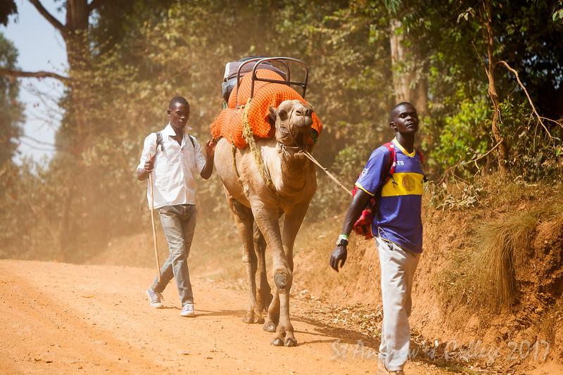 Uganda 17 (226 of 359).jpg