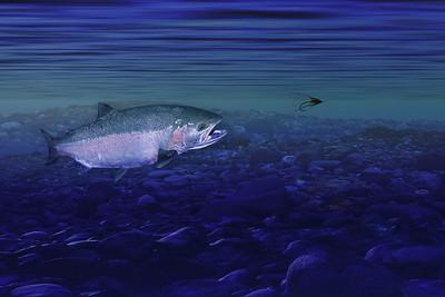 Fishing British Columbia